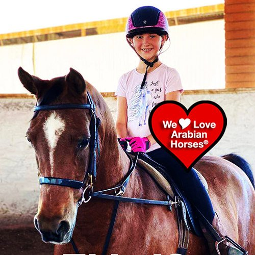 we-love-arabian-horses-this-is-our-future-168