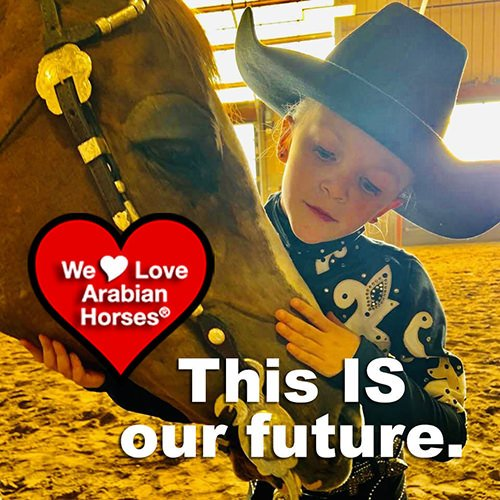 we-love-arabian-horses-this-is-our-future-181